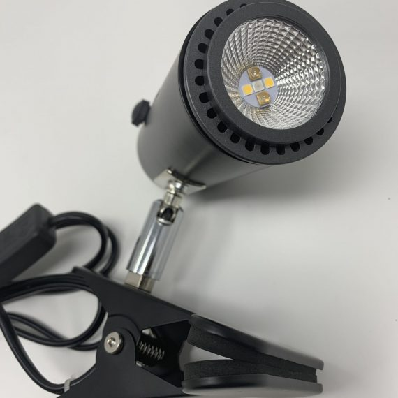 UV LED Basking Bulb Type 2/Clamp Lamp Bundle